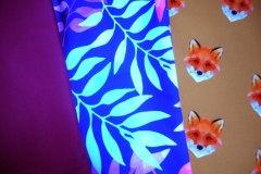 ostružinová, barevné listy, lišky